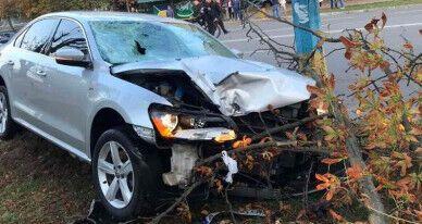 Водитель остановился, только когда врезался в дерево