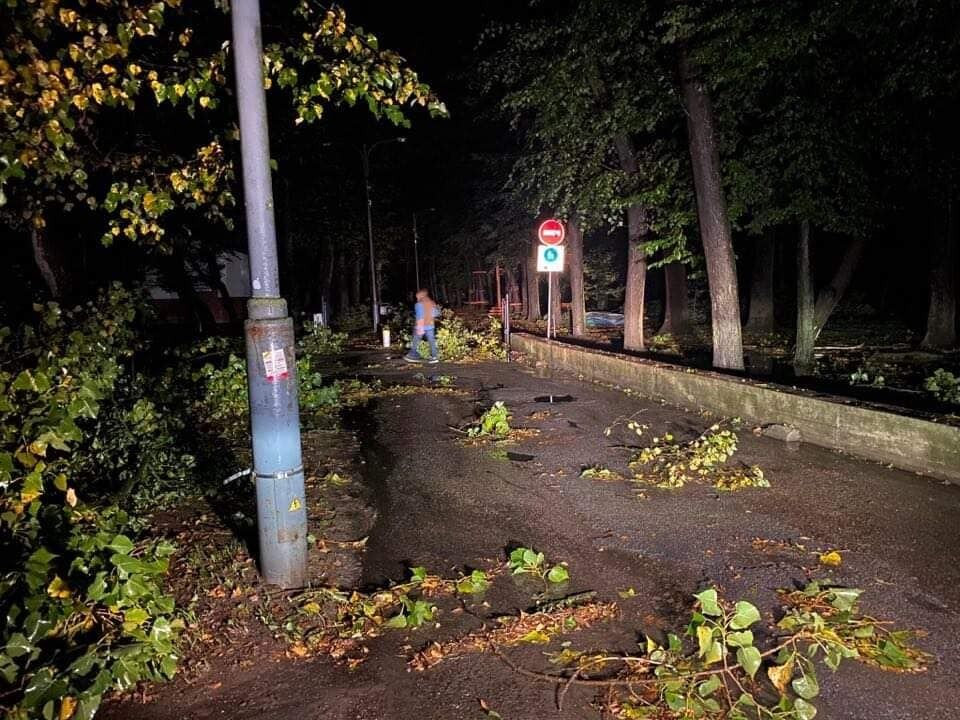 Последствия стихии в городском парке.
