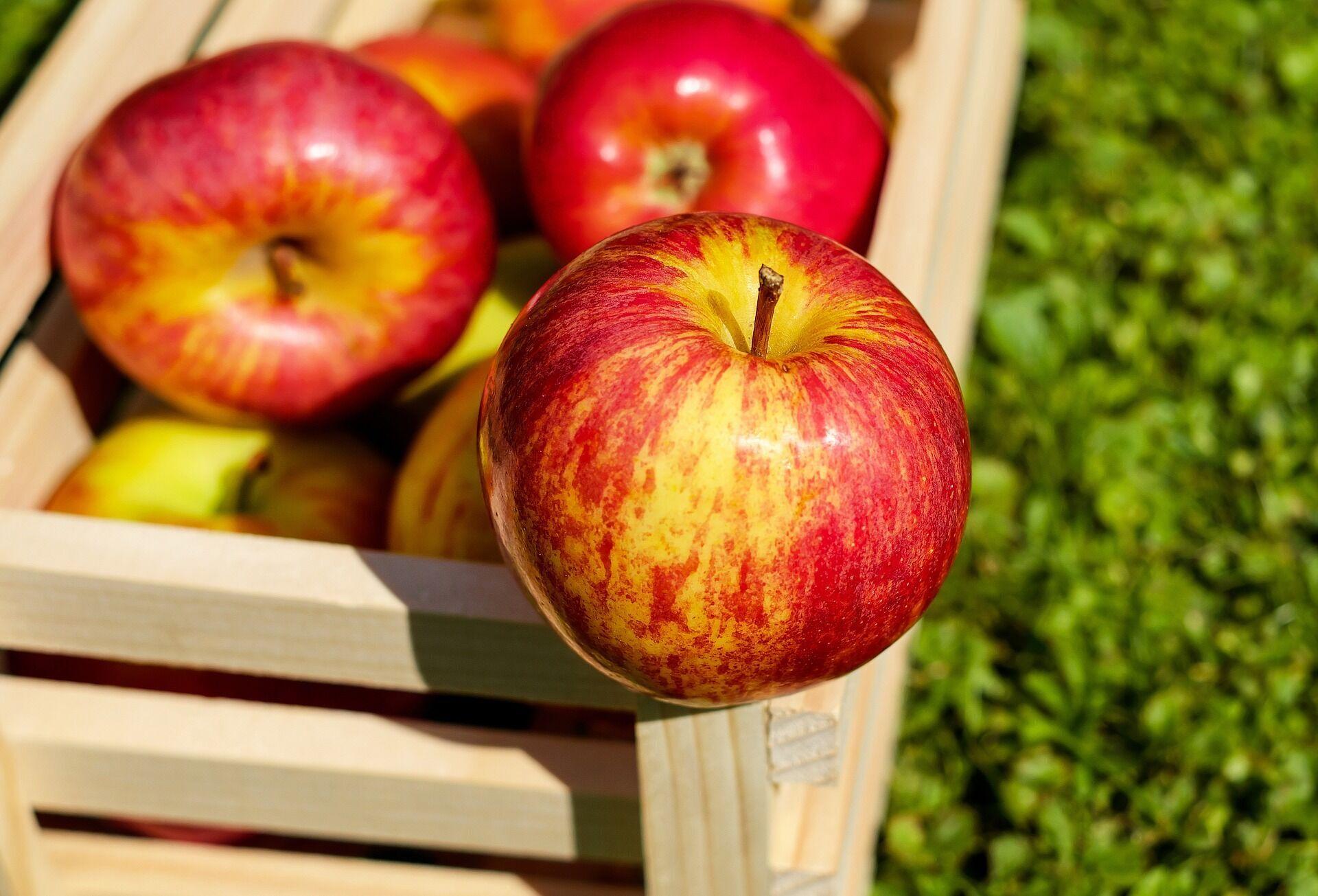 Яблочная диета – одна из самых жестких