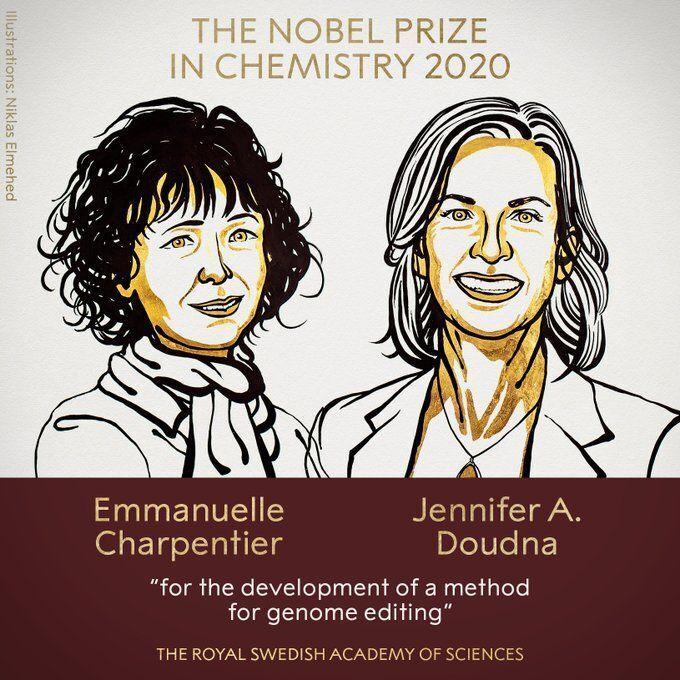 Вчені Шарпентьє і Дудна стали володарками Нобелівської премії з хмії