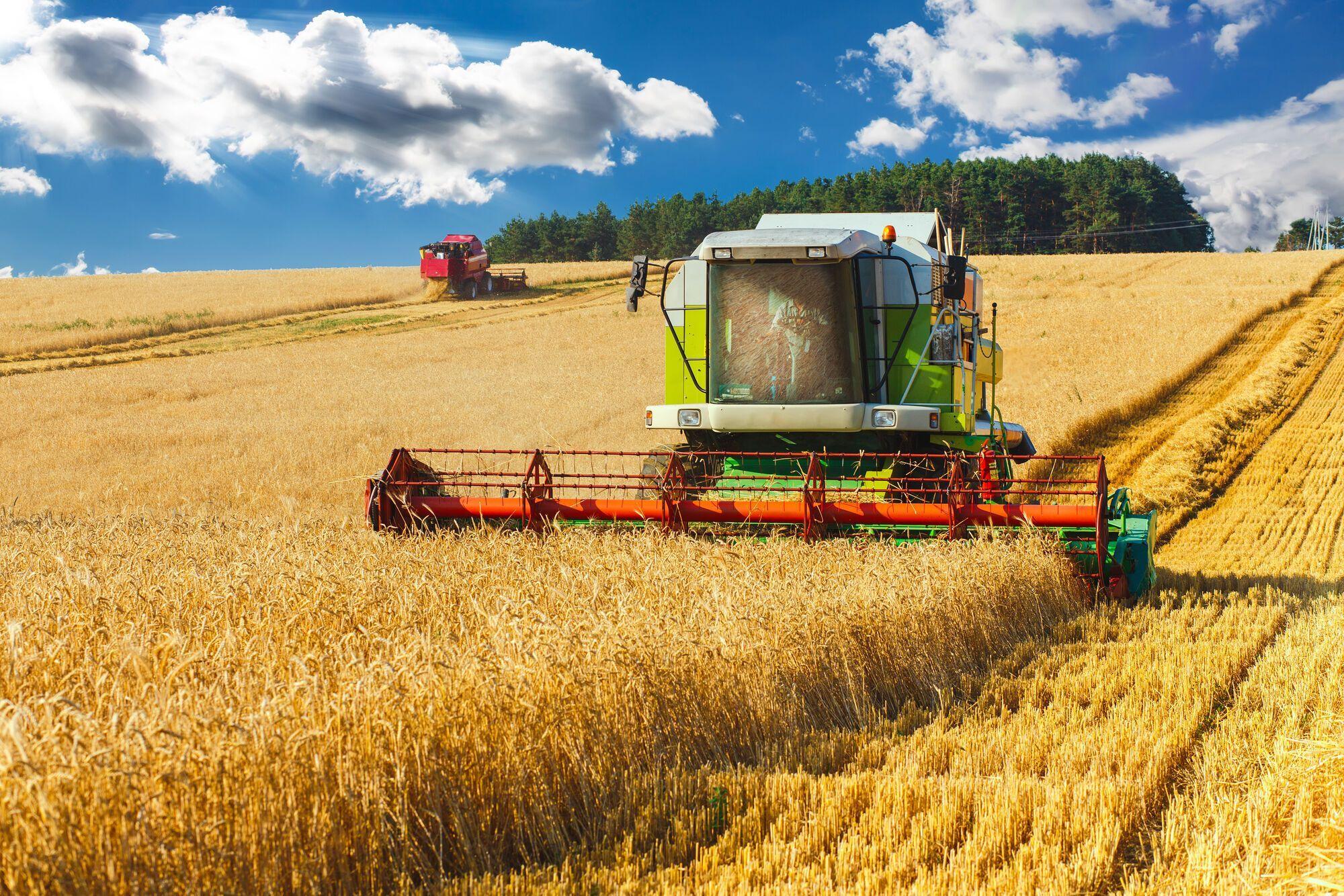 День работников сельского хозяйства в Украине: когда отмечают