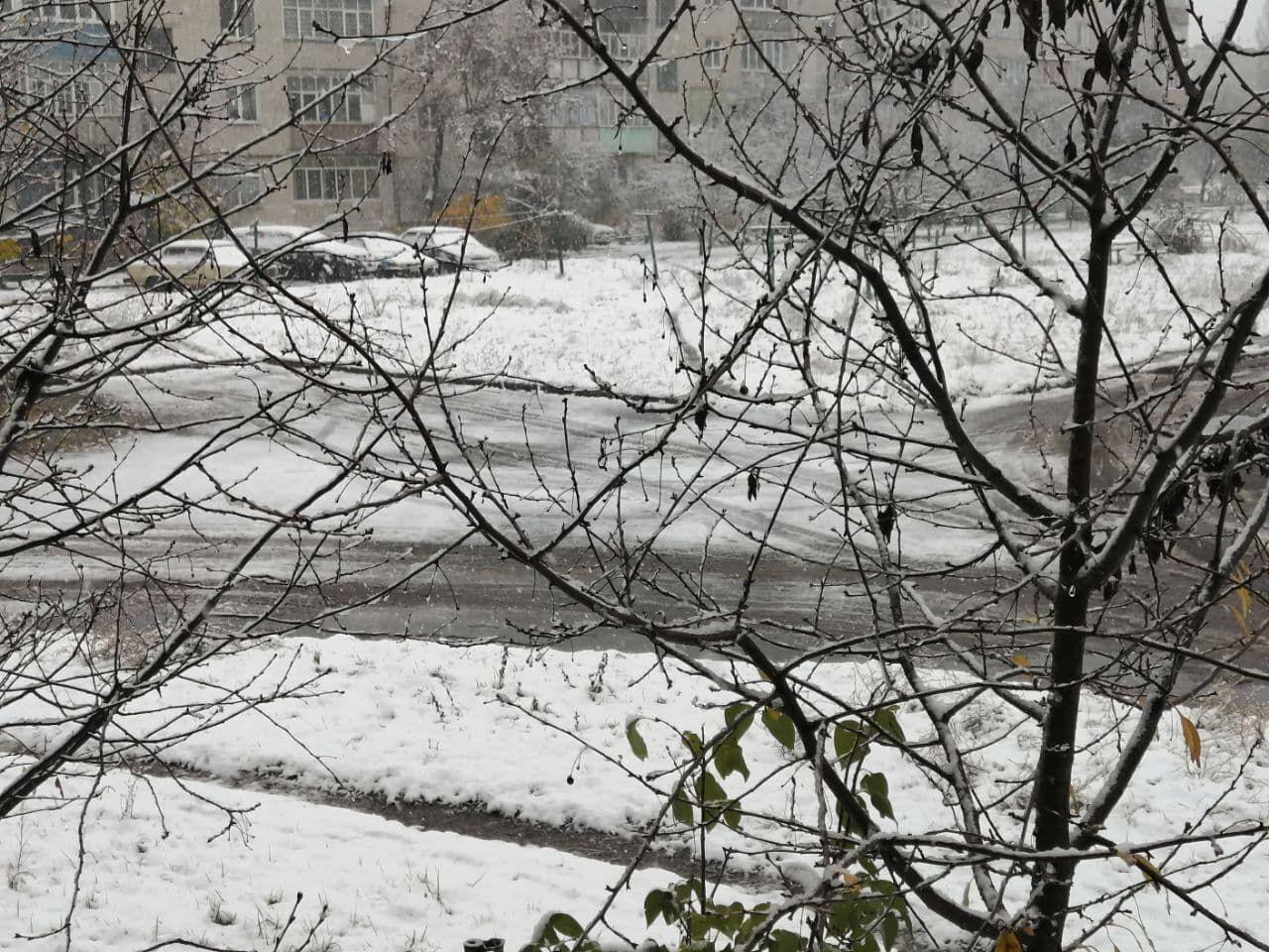 Шостку засипало снігом