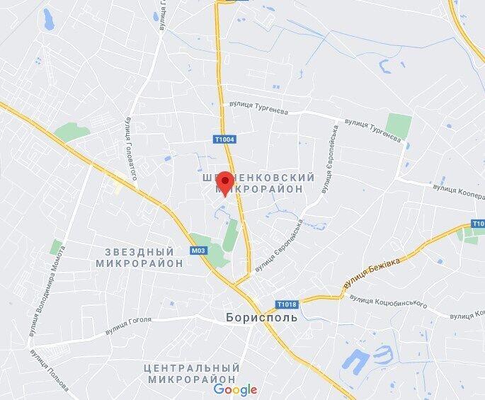 Інцидент стався на вулиці 2-га Нова в Борисполі.