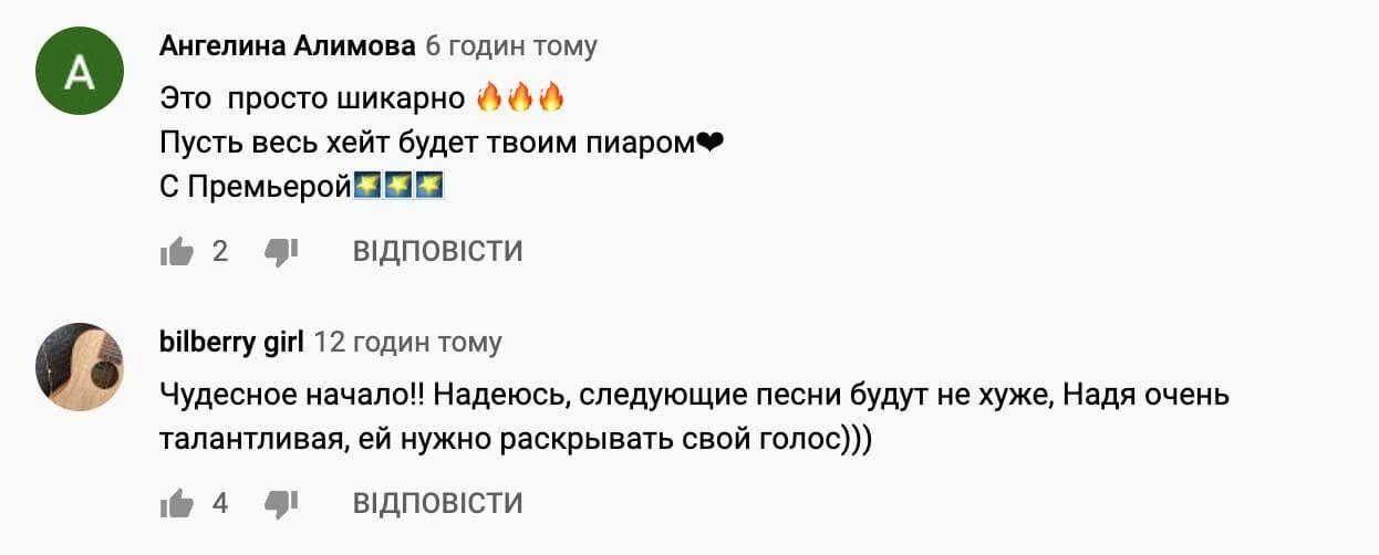 Песня и клип Дорофеевой вызвали неоднозначную реакцию у поклонников