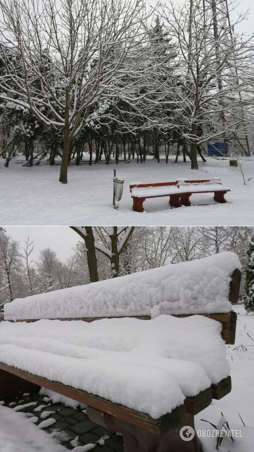 Сумскую область замело снегом