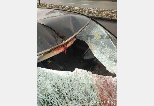 Голова пішохода влетіла в салон авто