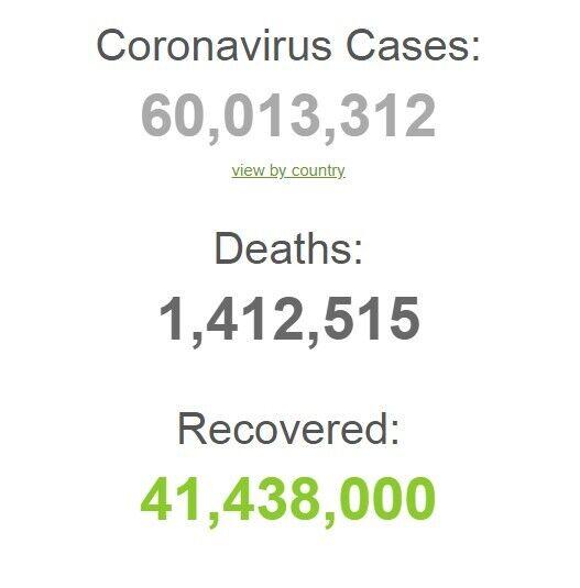 Коронавирус поразил более 60 млн человек в мире
