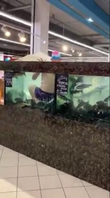 """Посетитель """"Сильпо"""" окунулся в аквариум"""