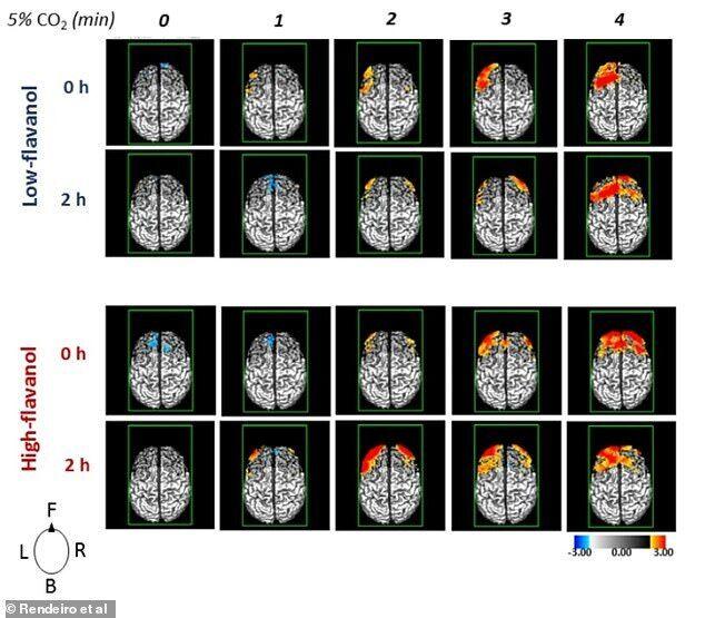 Результати перевірки кровообігу мозку в учасників експерименту та їхніх когнітивних функцій через дві години після вживання какао