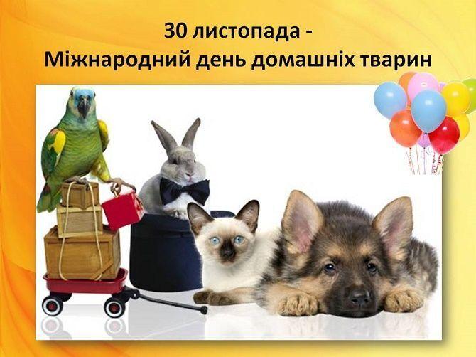 Поздравления с Днем домашних животных