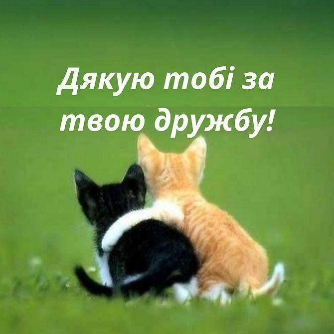 Открытка в День домашних животных