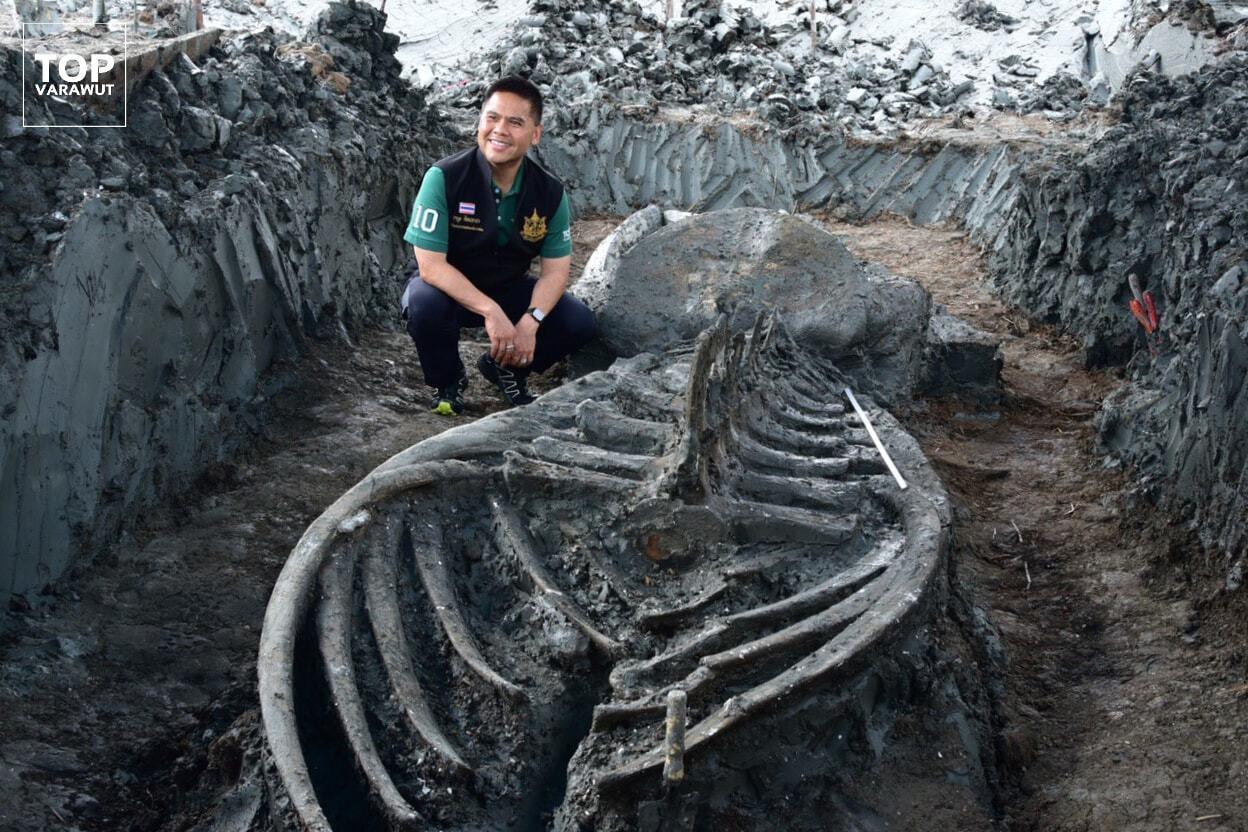 Костям предположительно от 3 до 5 тыс. лет