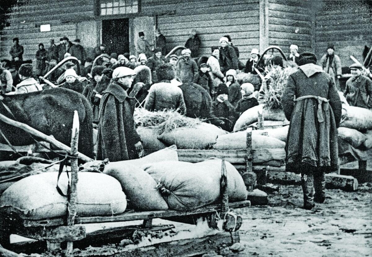 Крестьяне сдают хлеб, 1930 год, Барышевский район Киевского округа