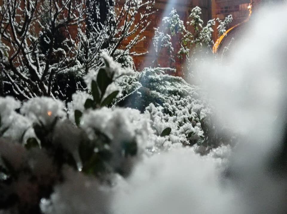 Луцк накрыло снегом