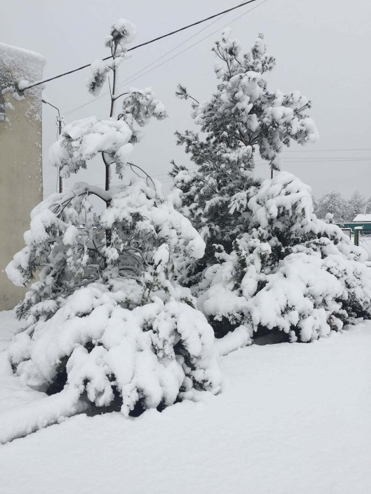 Снег в Ривненской области