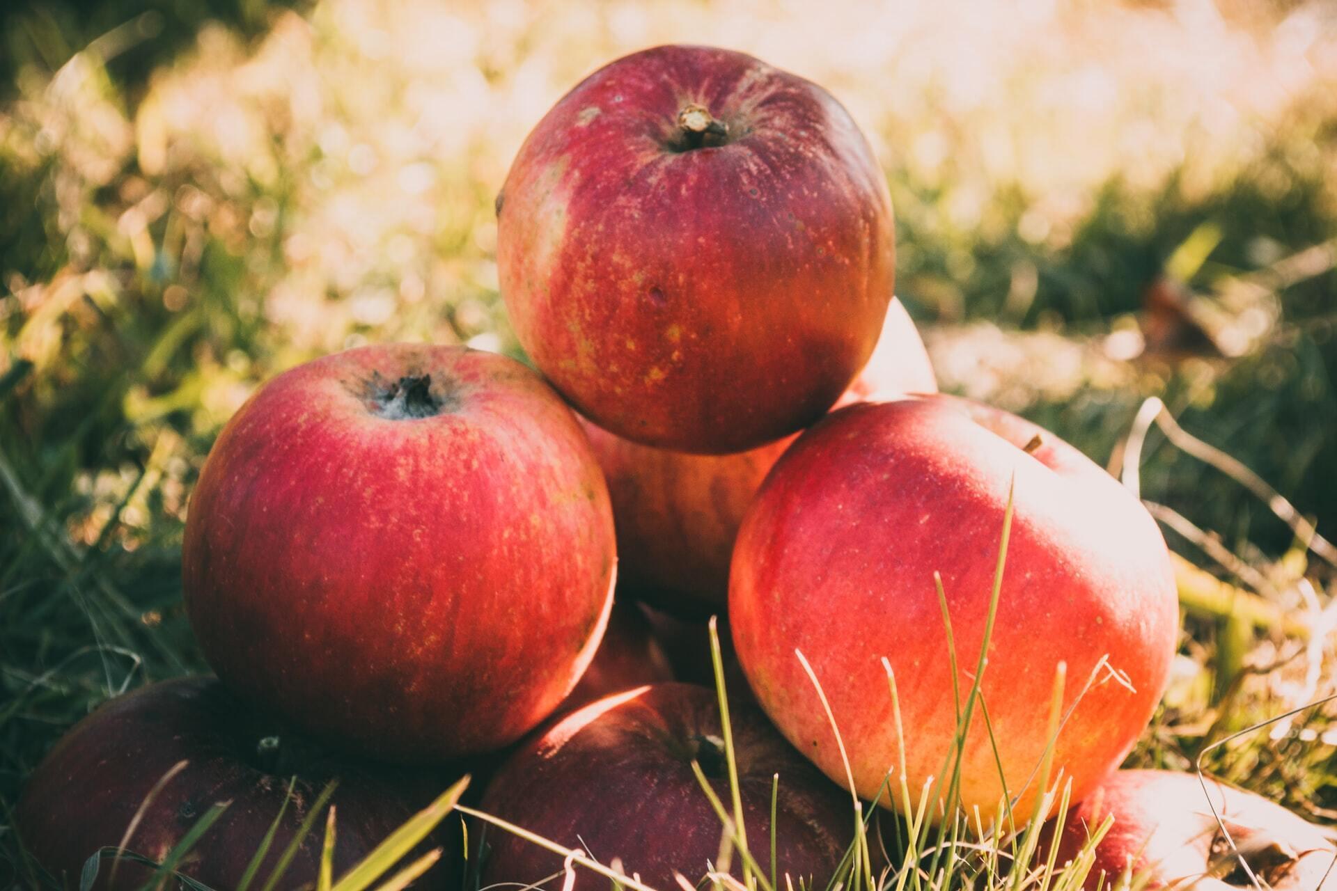 Яблоки – богатый источник пектина, который может быть полезен при воспалительных заболеваниях кишечника