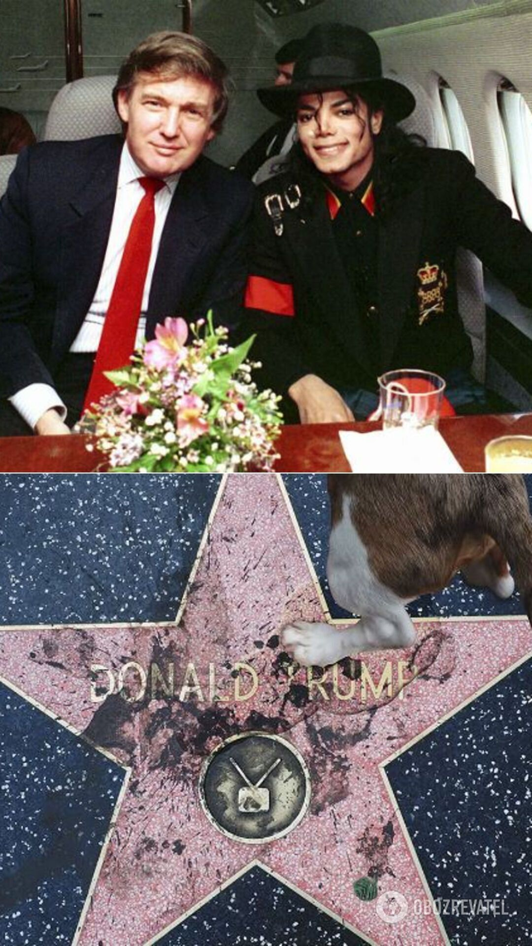 Дональд Трамп и Майкл Джексон; звезда Трампа, на которую многократно покушались вандалы