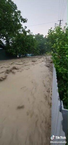 За словами автора відео, вода сягала половини паркану