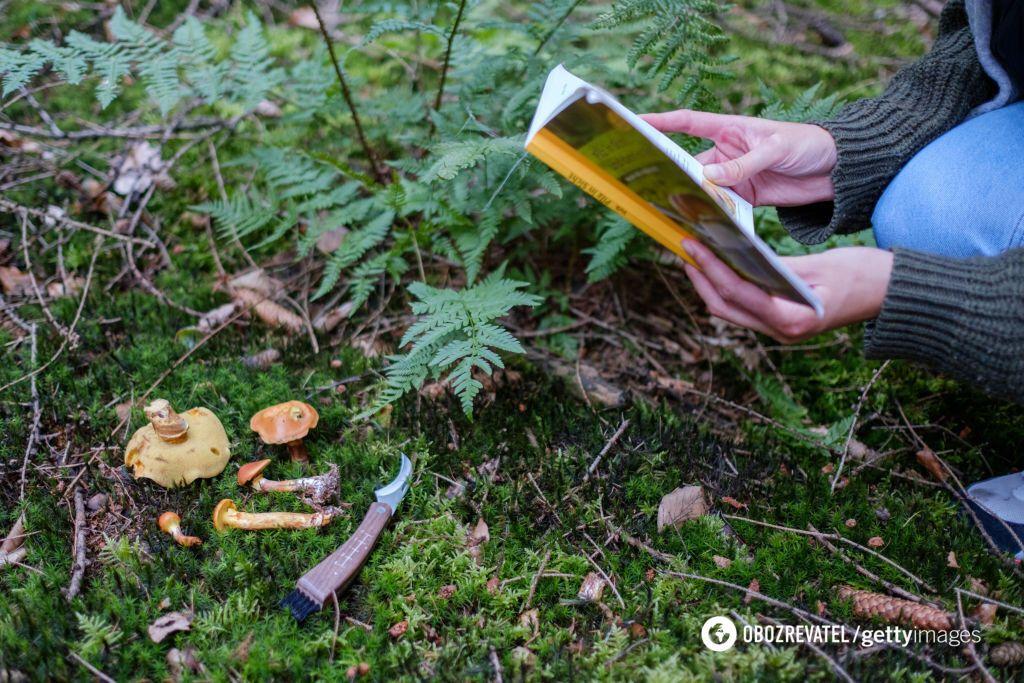 """Отруєні гриби купували на """"Привозі"""""""