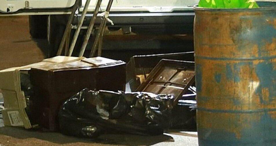 Части тел подростков были разложены в контейнеры для хранения кур.