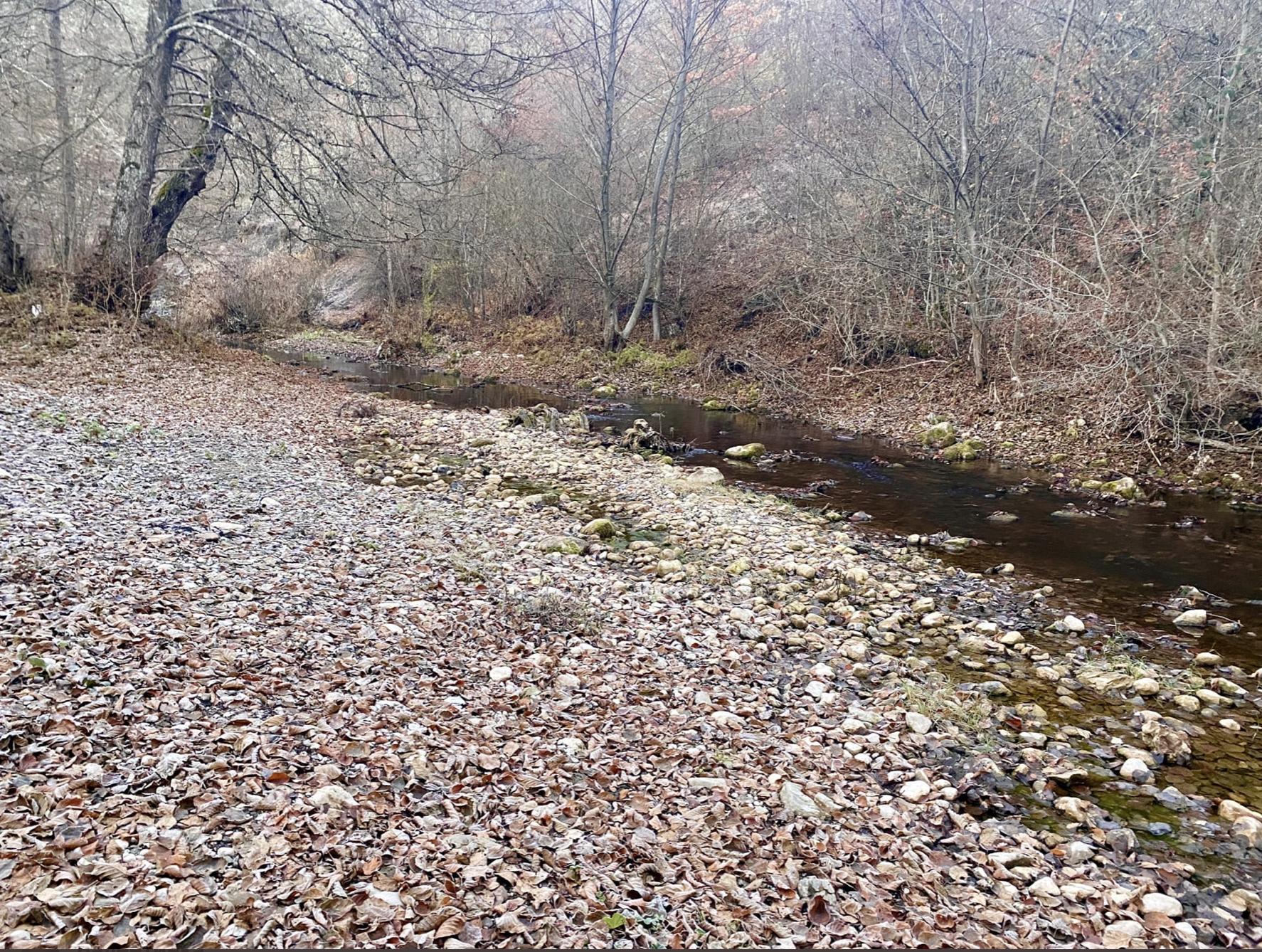 Уровень воды в Кокозке упал.