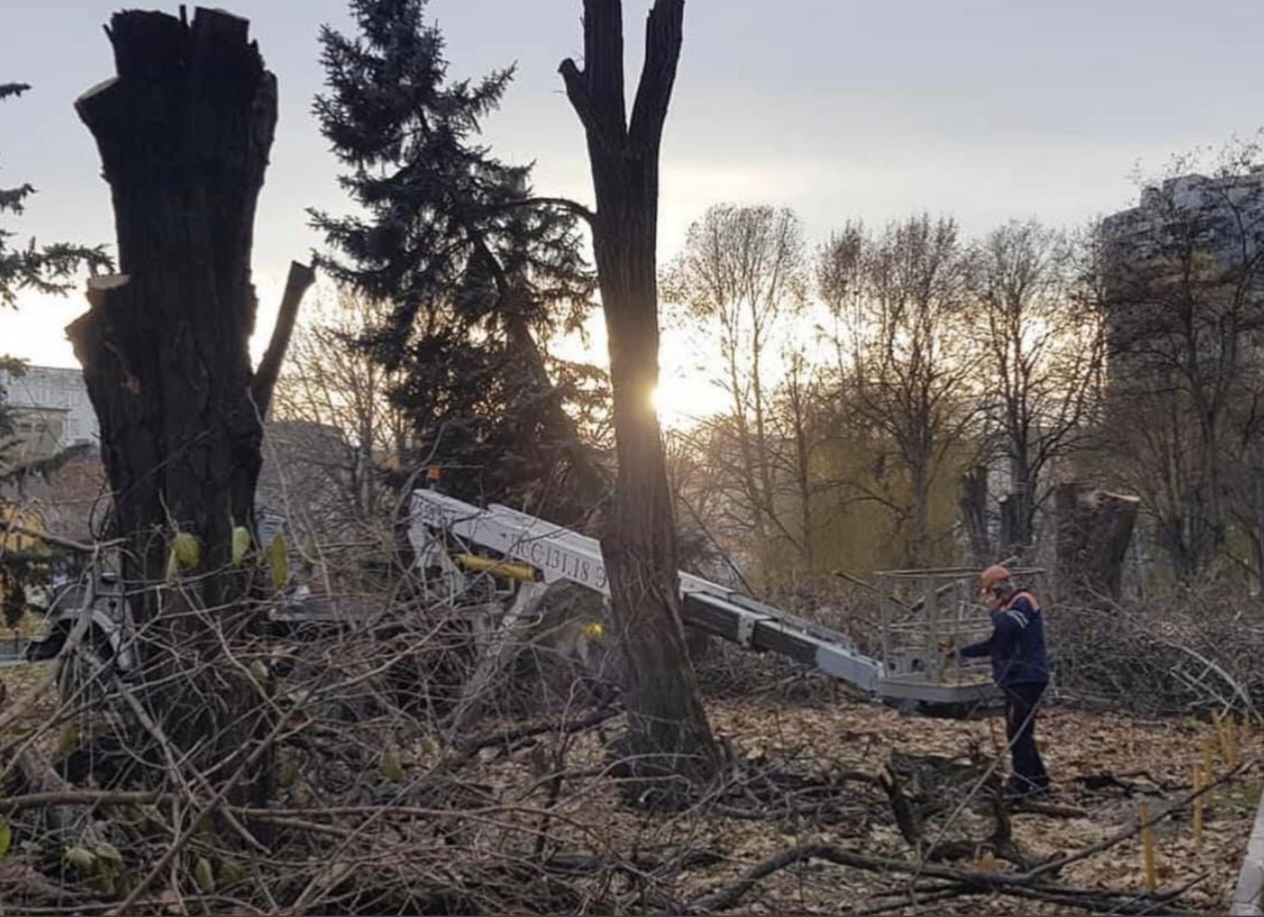 В Симферополе вырубали парк