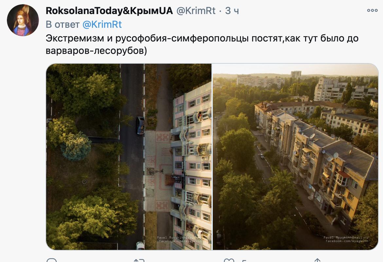 В Крыму массово вырубили деревья в городах: фото до оккупации и после