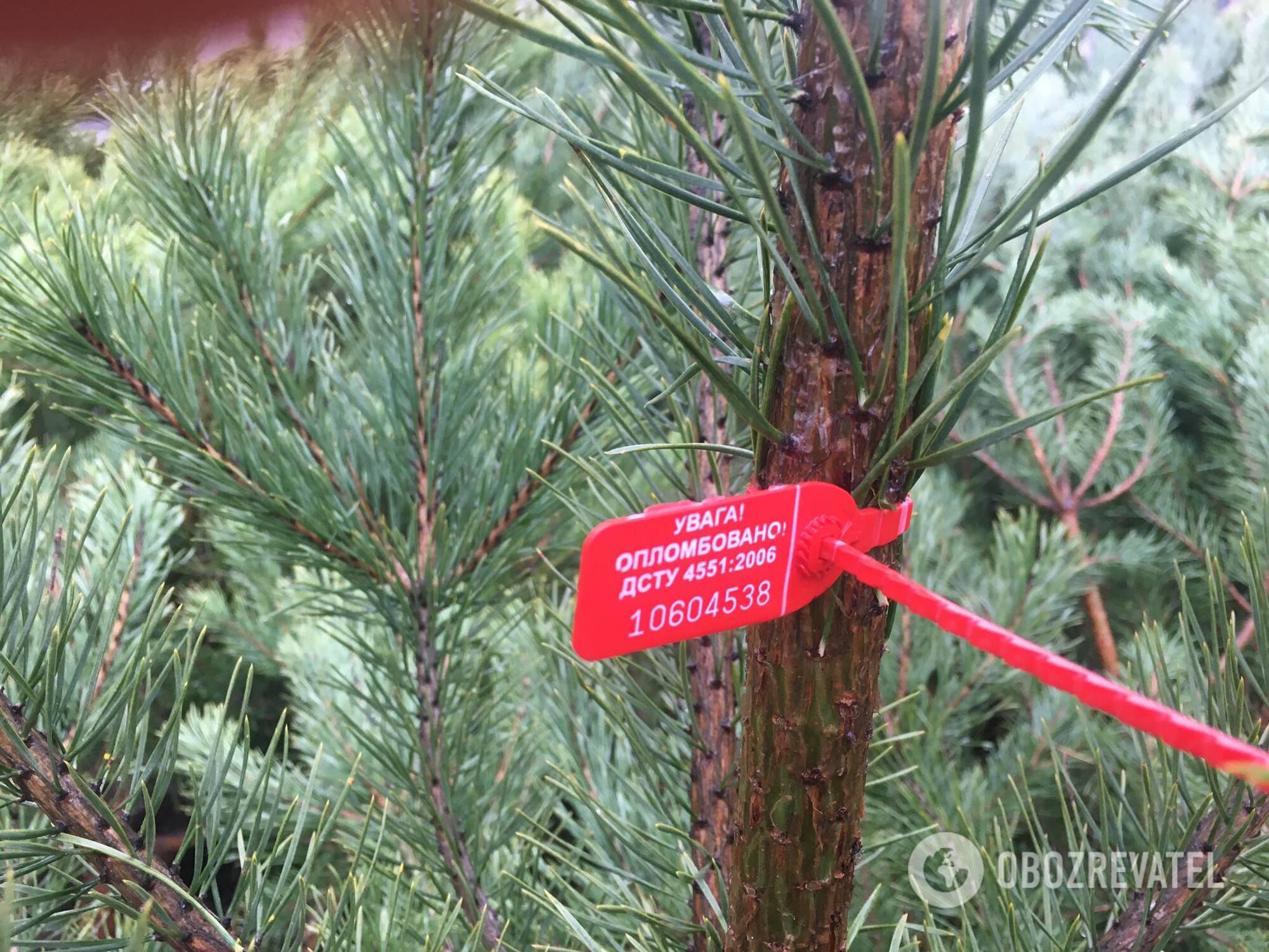 На каждом дереве должен быть чип.