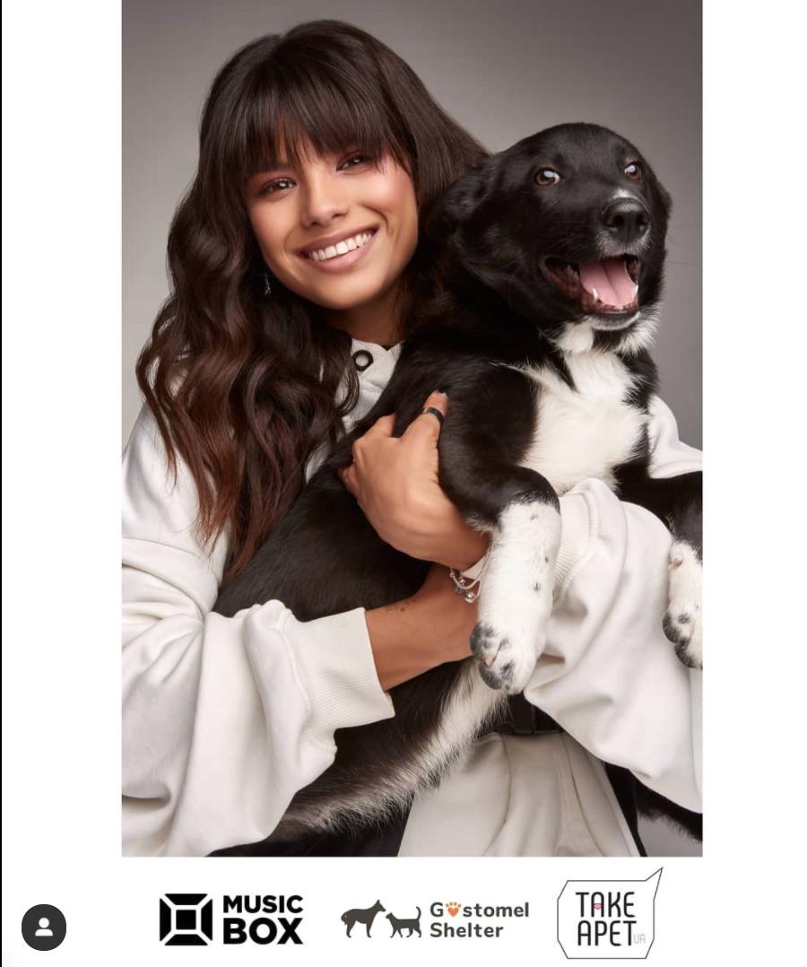 Мишель Андраде снялась в фотосессии ради бездомных животных