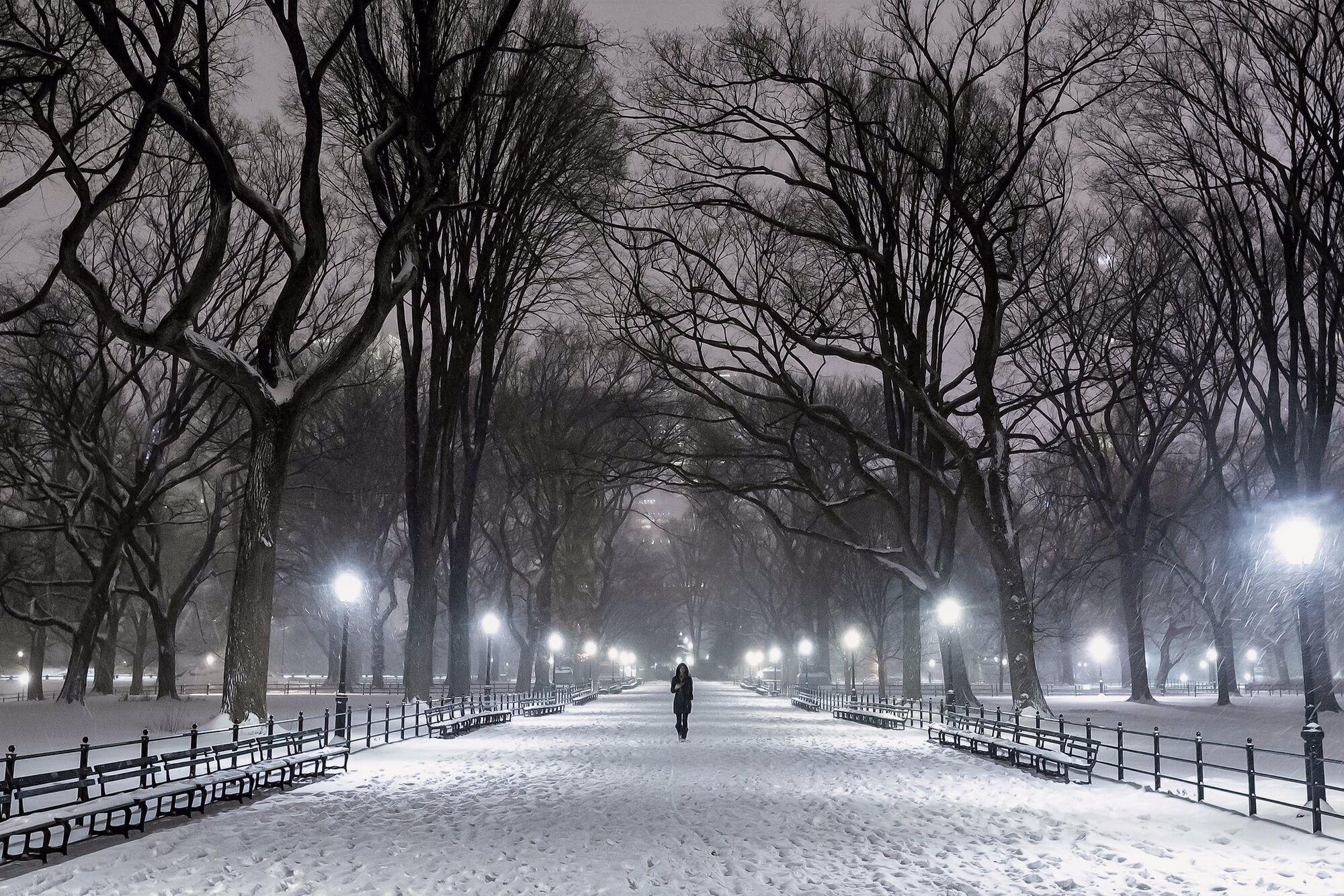 Снег в Центральном парке