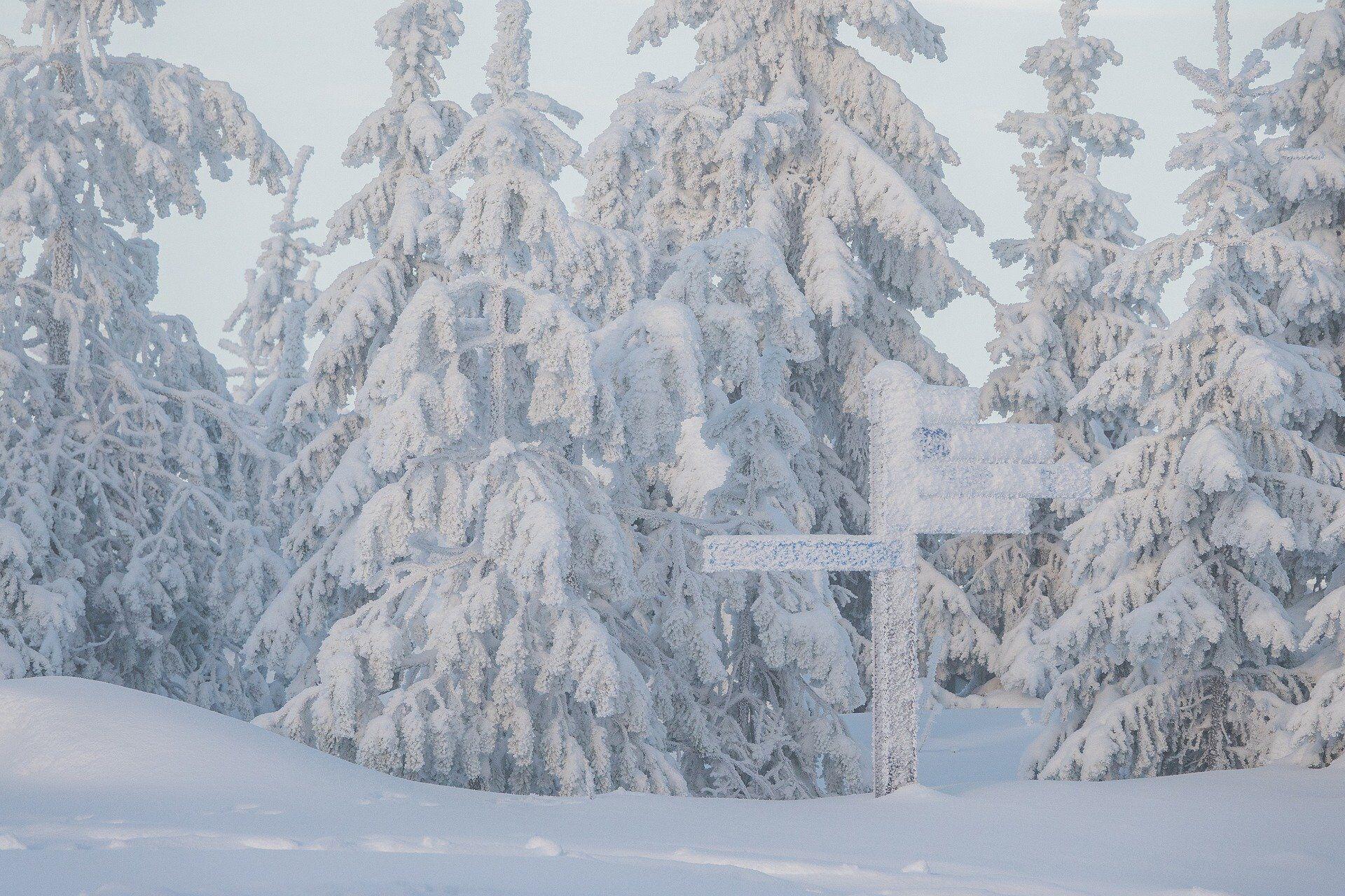 Прикмети на 19 грудня: що не можна робити в День Миколая.