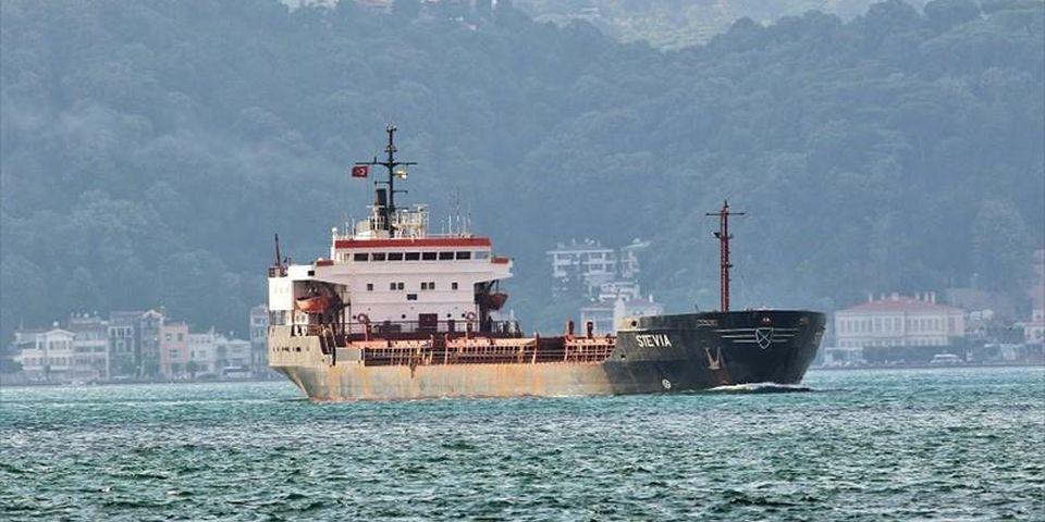 Пираты взяли в плен 6 украинских моряков на судне Stevia