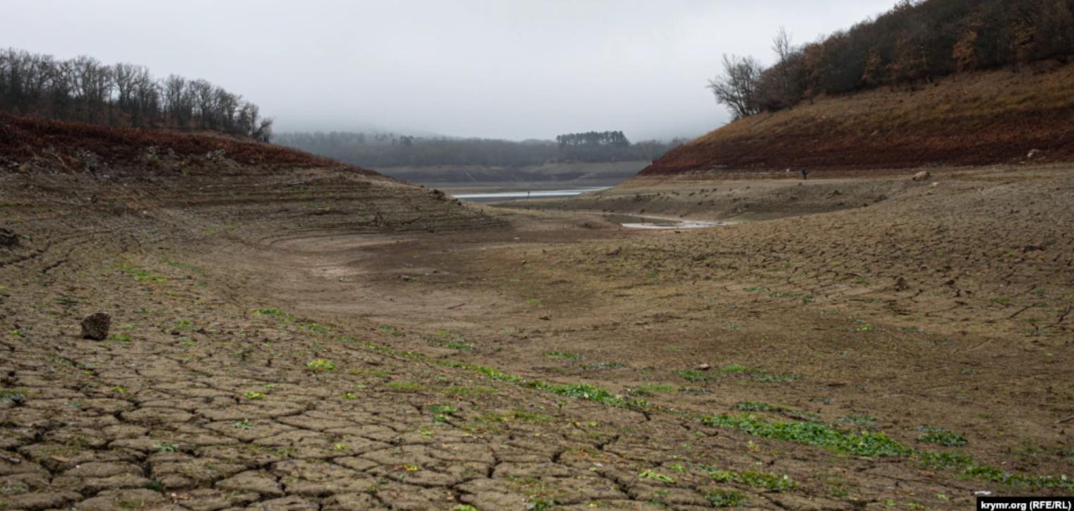 Дно Партизанського водосховища поросло бур'янами.