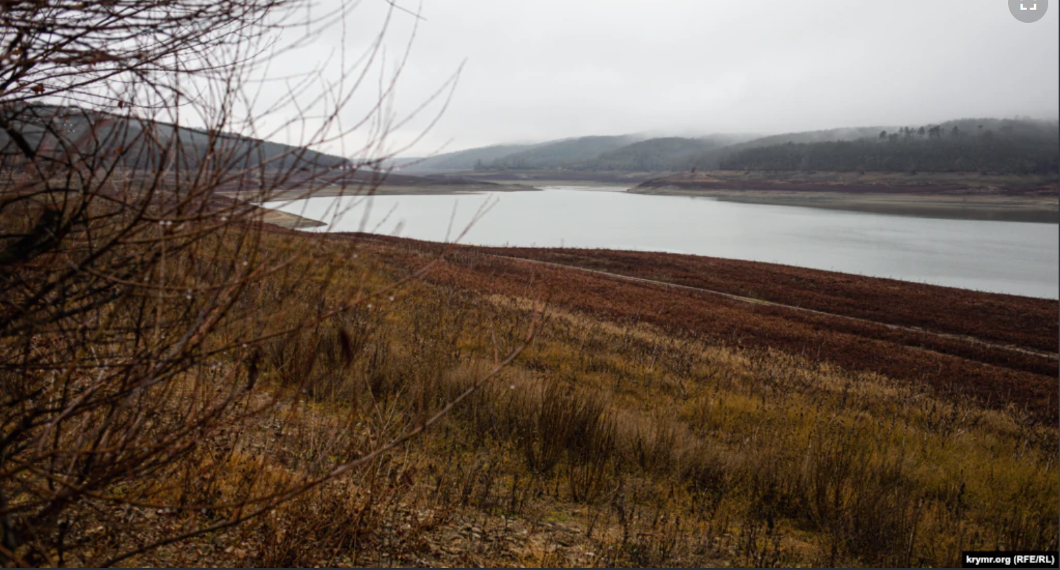 На місці, де росте червона трава, раніше була межа між Партизанським водосховищем і берегом.