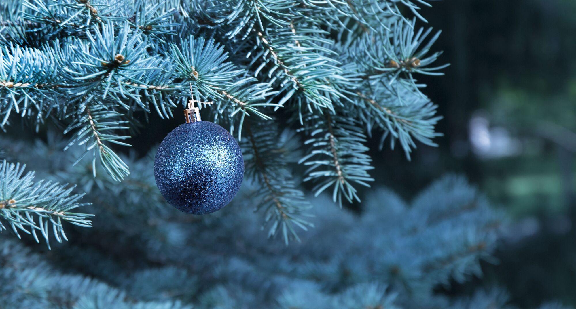 Юлий Цезарь ввел юлианский календарь, которым утвердил наступление нового года 1 января