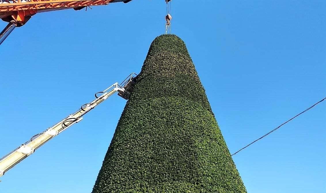 Процесс монтажа елки