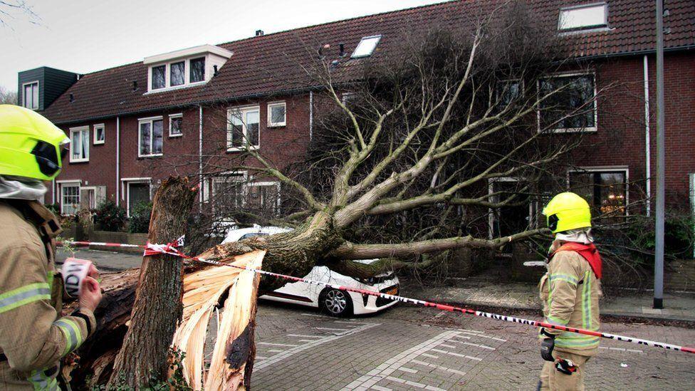 Роттердам, Нідерланди