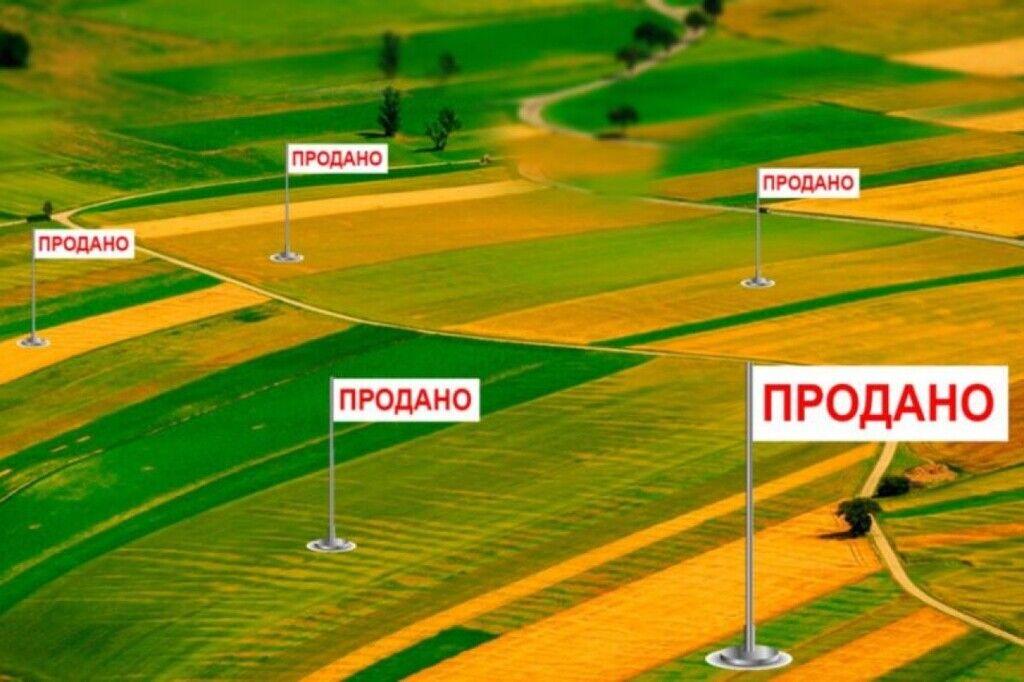 """""""Землю – американцям"""": український економіст виступив з радикальною пропозицією"""