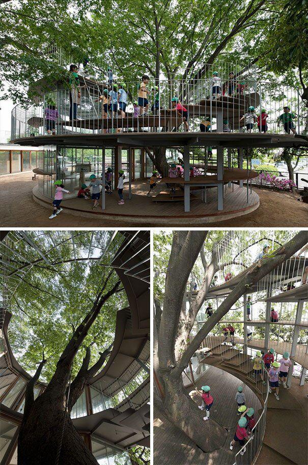 Майданчик дитячого садка в Японії побудований навколо дерева