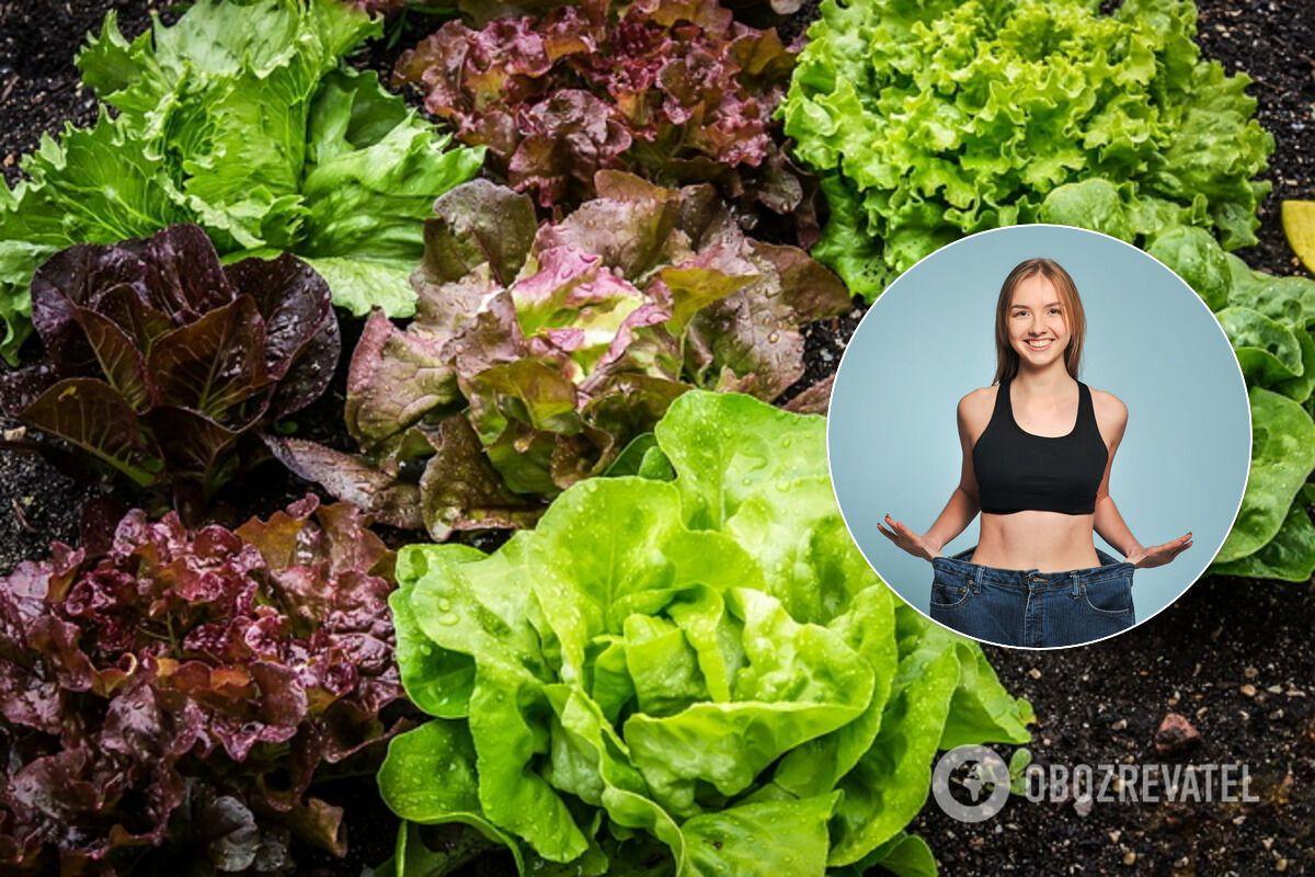 Зелень содержит очень мало калорий и углеводов
