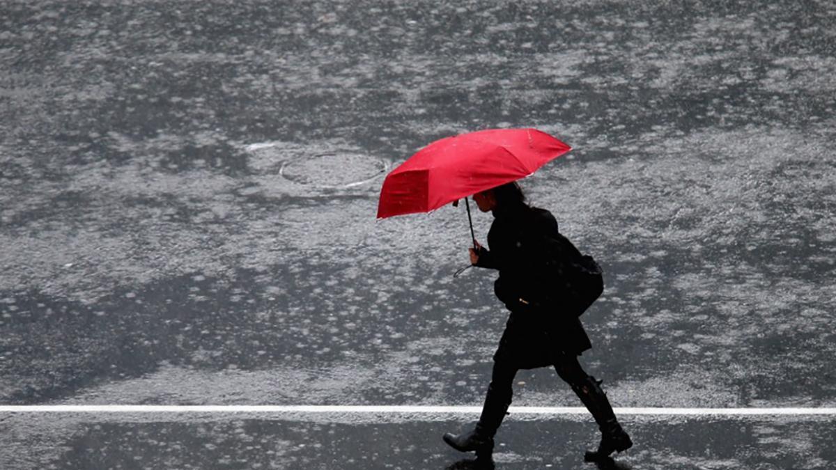 Нам нужно много дождей