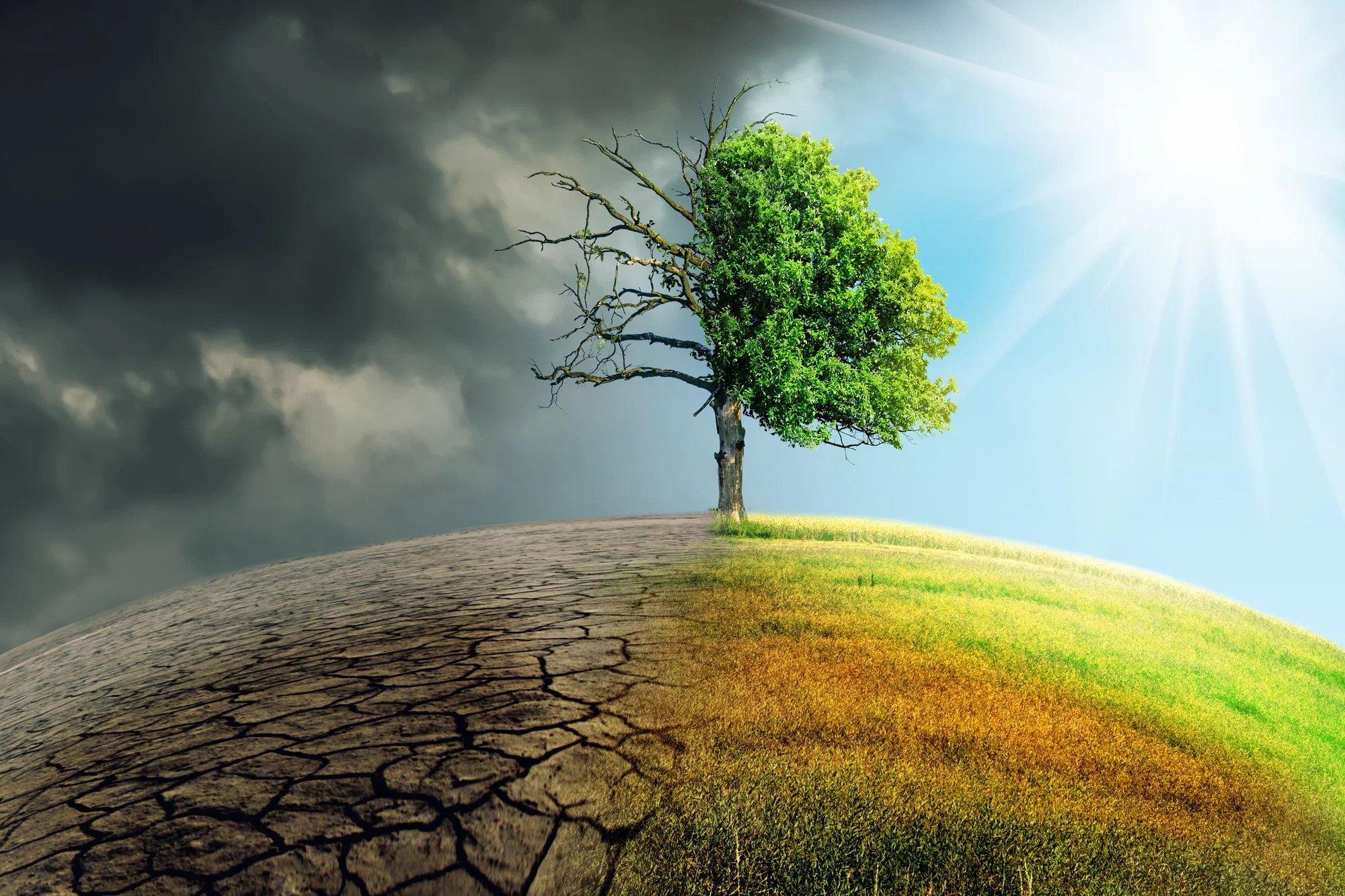 Цілі країни стануть пустелею: чим загрожують зміни клімату