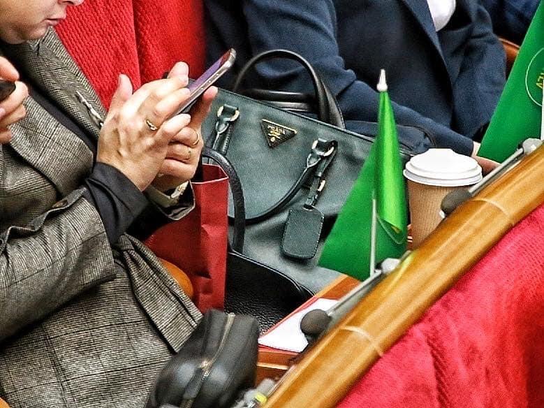 Вікторія Кінзбурська з сумкою від Prada в Раді