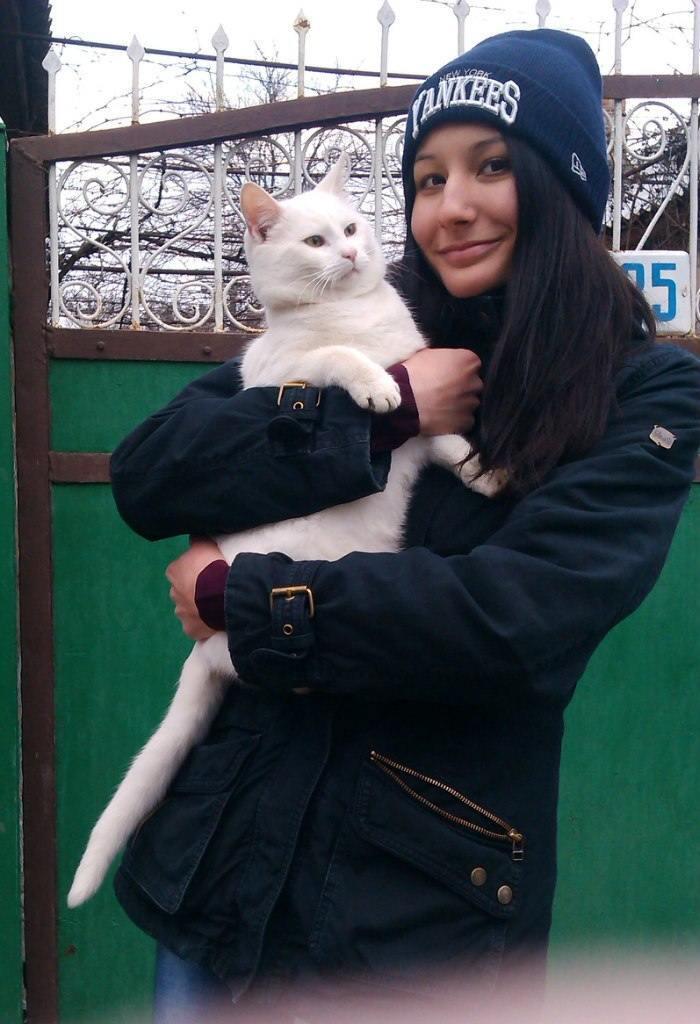 Знаменитый белый кот