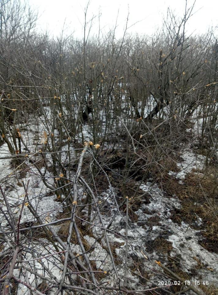 Опубліковані кадри з місця страшного бою на Луганщині