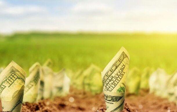Запуск ринку землі: екс-прем'єр назвав ризик