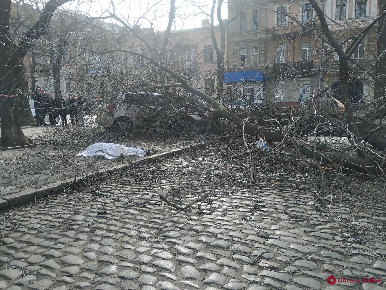 Упавшее дерево убило женщину в центре Одессы