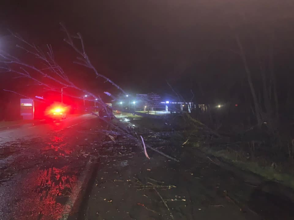 В Шегини от порыва ветра упали деревья
