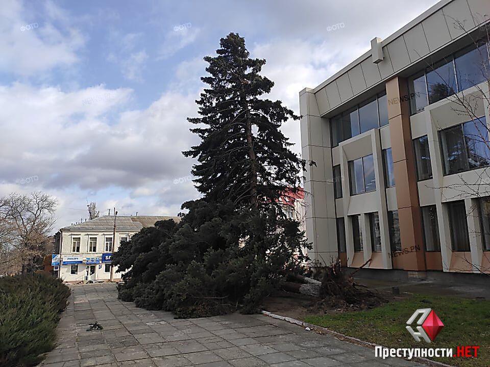 Деревья повалило у здания областного Дворца культуры