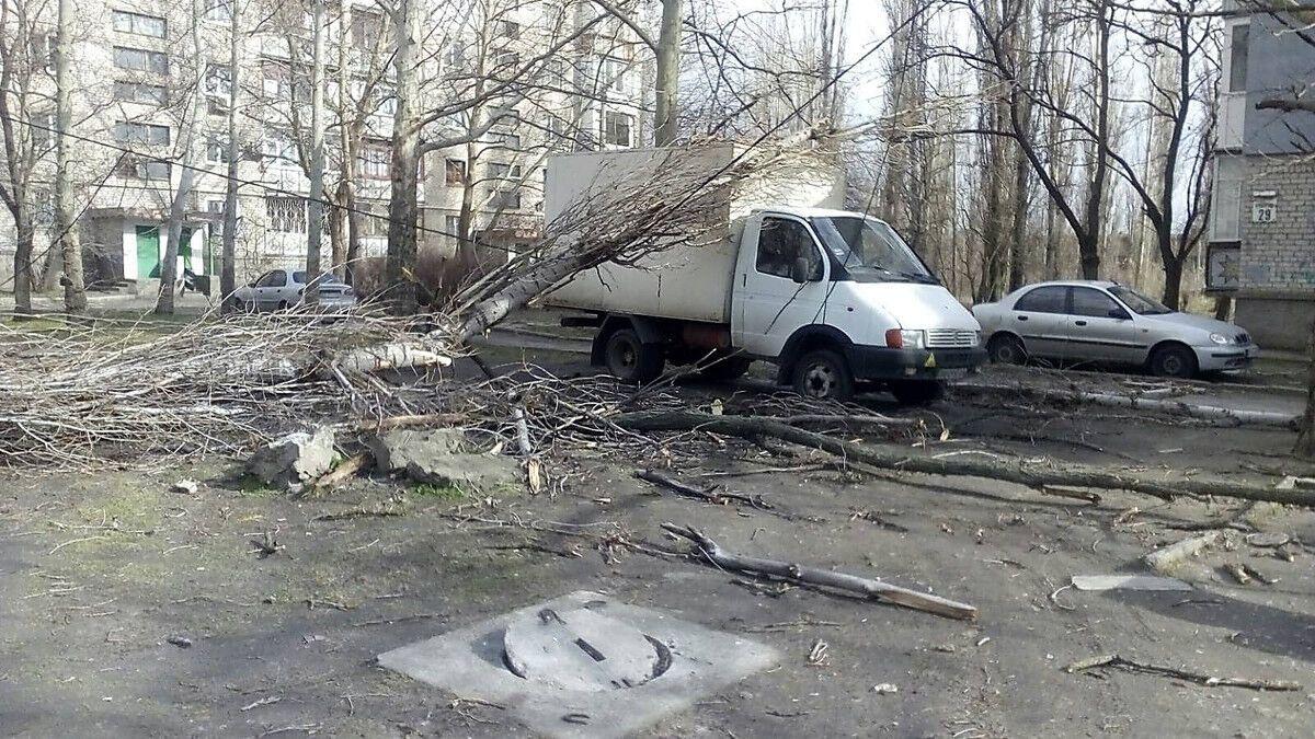 Деревья падали на авто